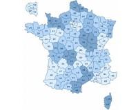Garmin Topo France Pro