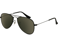 Ray-Ban Aviator Junior RJ9506S Black Grey Green