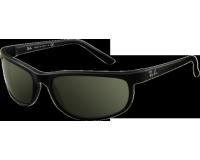 Ray-Ban Predator 2 Black/Matte Black Crystal Green