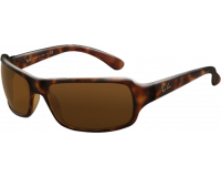 Ray-Ban RB4075 RB4075 Havana Crystal Brown Polarized